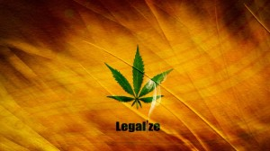 Marijuana collective attorney