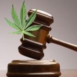 Dispensary law attorney1
