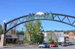 Weed school1