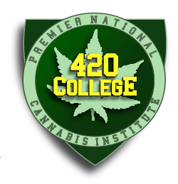 Medical cannabis seminar